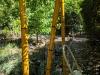 fake_bamboo_day2_pass2_sm